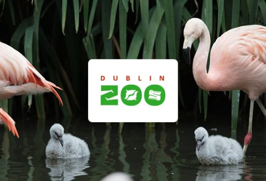 Save up to 10% on Dublin Zoo Tickets